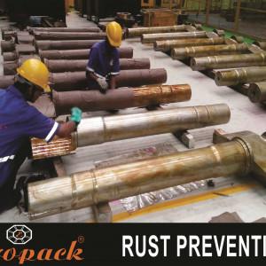 Anti Rust Treatment (Ashfosil HD Coating for Rust Precautions)