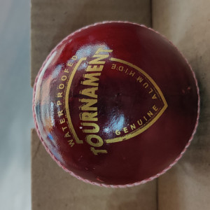 Tournament leather ball
