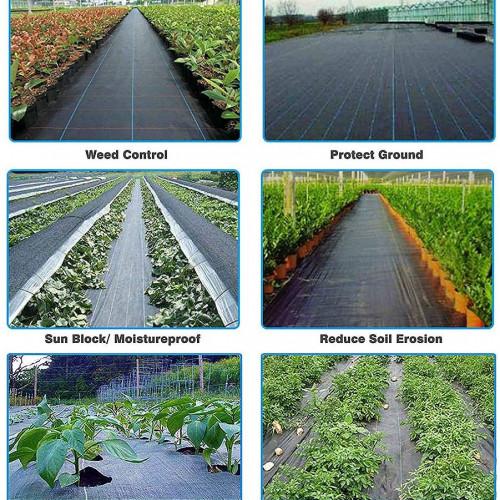 Mipatex 90 GSM Premium Garden Weed Control Barrier Sheet Mat 1.85m x 40m, Landscape Fabric Durable Heavy-Duty Weed Block Gardening Matting, Eco-Friendly and Convenient Design (Black)