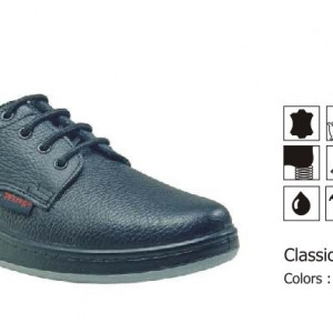 Classic DBS (safety Shoes)