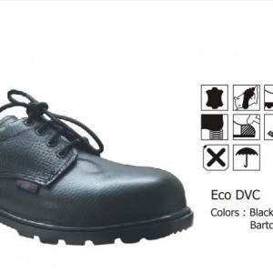 Eco DVC (Safety Shoes)